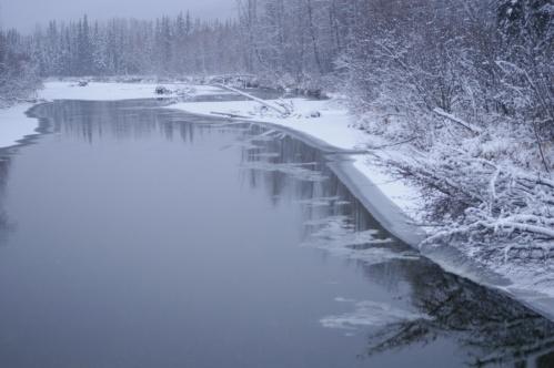 Chatanika River in Winter
